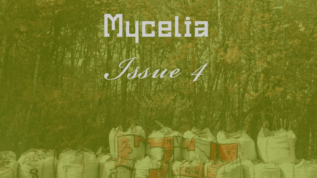 Image with overlaid text reading Mycelia Issue 4. The image is of trees with autumnal leaves, at the foreground are rows of stacked rubble contained in white sacks. The sacks are graffitied. Mycelia is a publication produced by Hedera Felix, for which I copy-edit and coordinate the publication of.